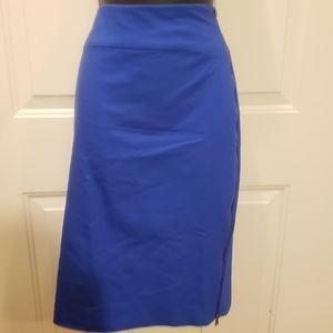 Express Side Zip Skirt